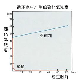 循环水产生恶臭(硫化氢)
