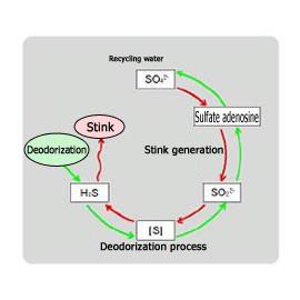 Stink generation